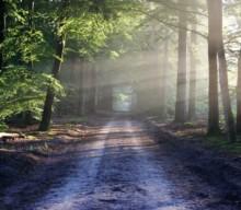 Strategia Clima: investimenti per la lotta al cambiamento climatico