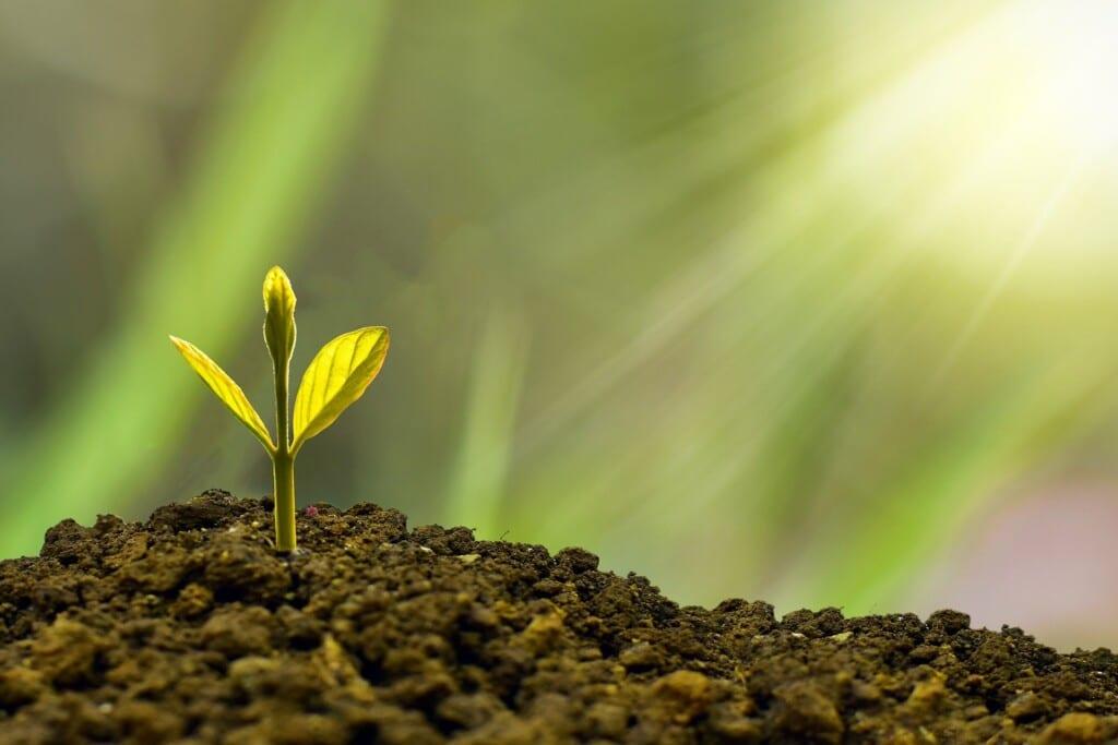 Smart Talk: il contest per startup green